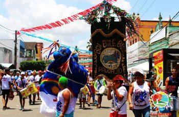 Clubes carnavalescos e agremiações recebem apoio financeiro para o Carnaval